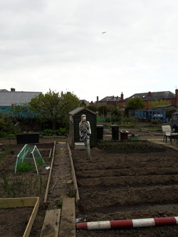 Allotment style