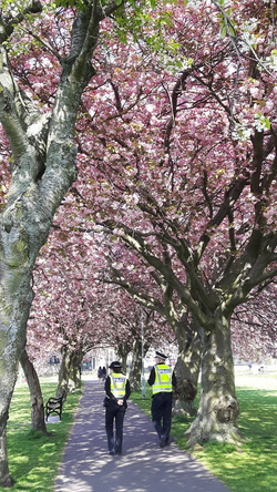 Police on patrol in The Meadows