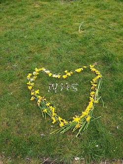 Flower arrangement in Victoria Park