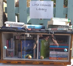 Little Colonies Pop-up Library