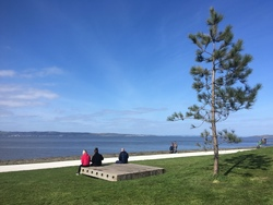 A socially-distant sit down at the Lighthouse Park, Western Harbour
