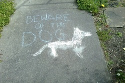 Beware of the dog!
