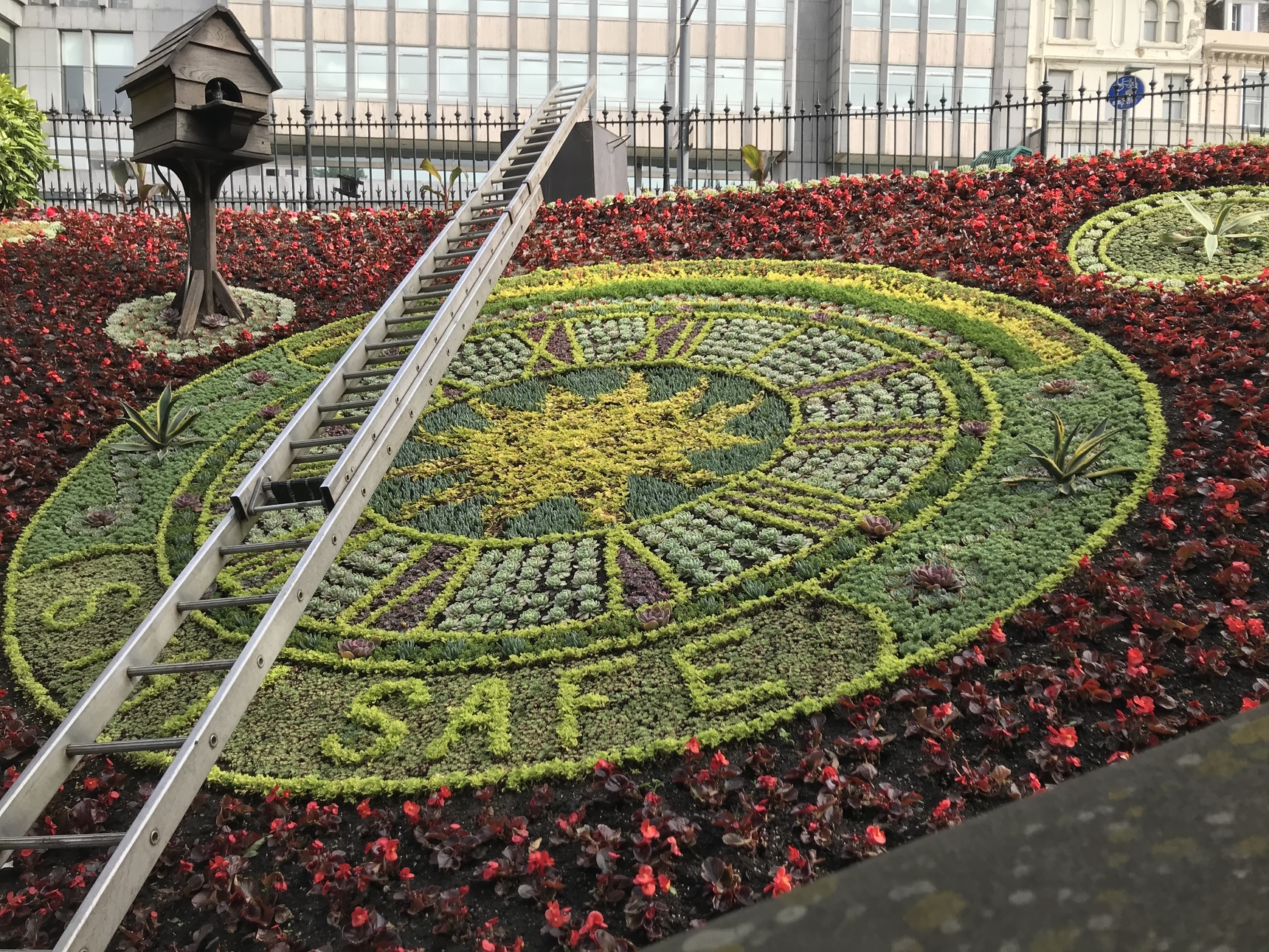 Support The NHS Floral Clock, Princes Street