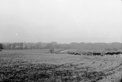Hailesland before 1965