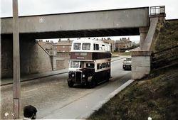 Private Hire Edinburgh Corporation Bus at Broomhouse-1960s