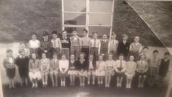 Murrayburn Primary School - Miss Gray's Class of 1955