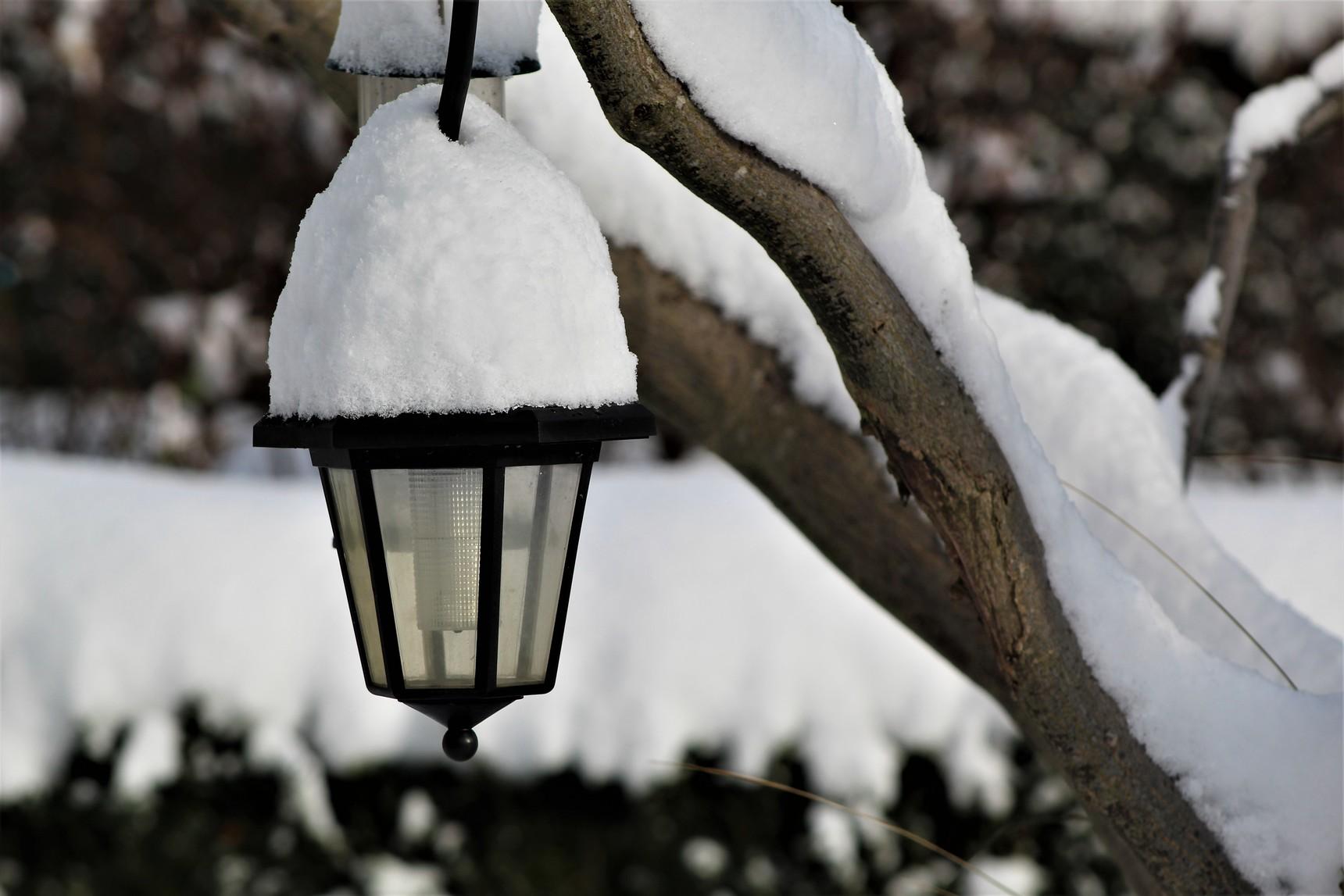 Snow lamp!