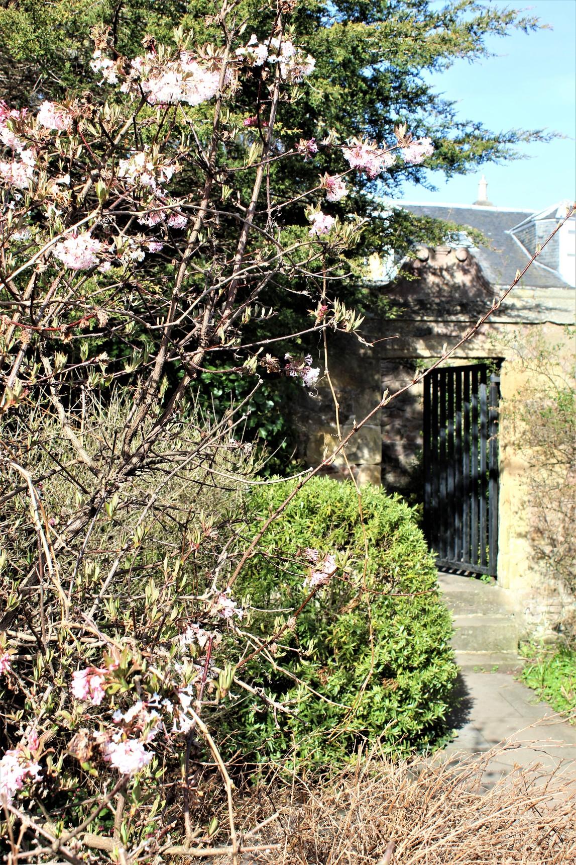 Entrance to 1 Chamberlain Road
