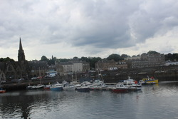 Looking out across the harbour