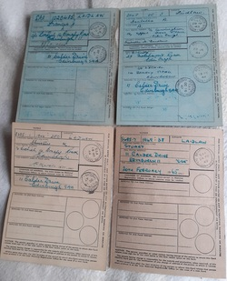 The Laidlaw Familys National Identity Cards