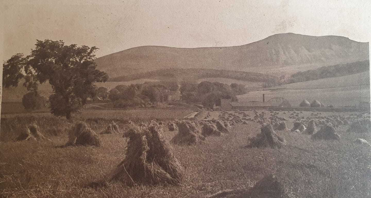 """View of the Pentlands and the """"T"""" Woods 1935"""