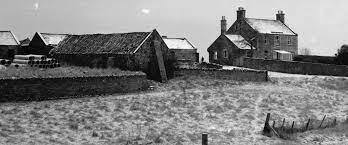 Wester Hailes Farm in the 1950s