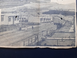 Front fencing and gardens of Calder Drive 1949