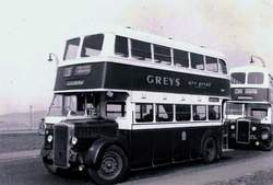 Sighthill Bus Terminus 1950s