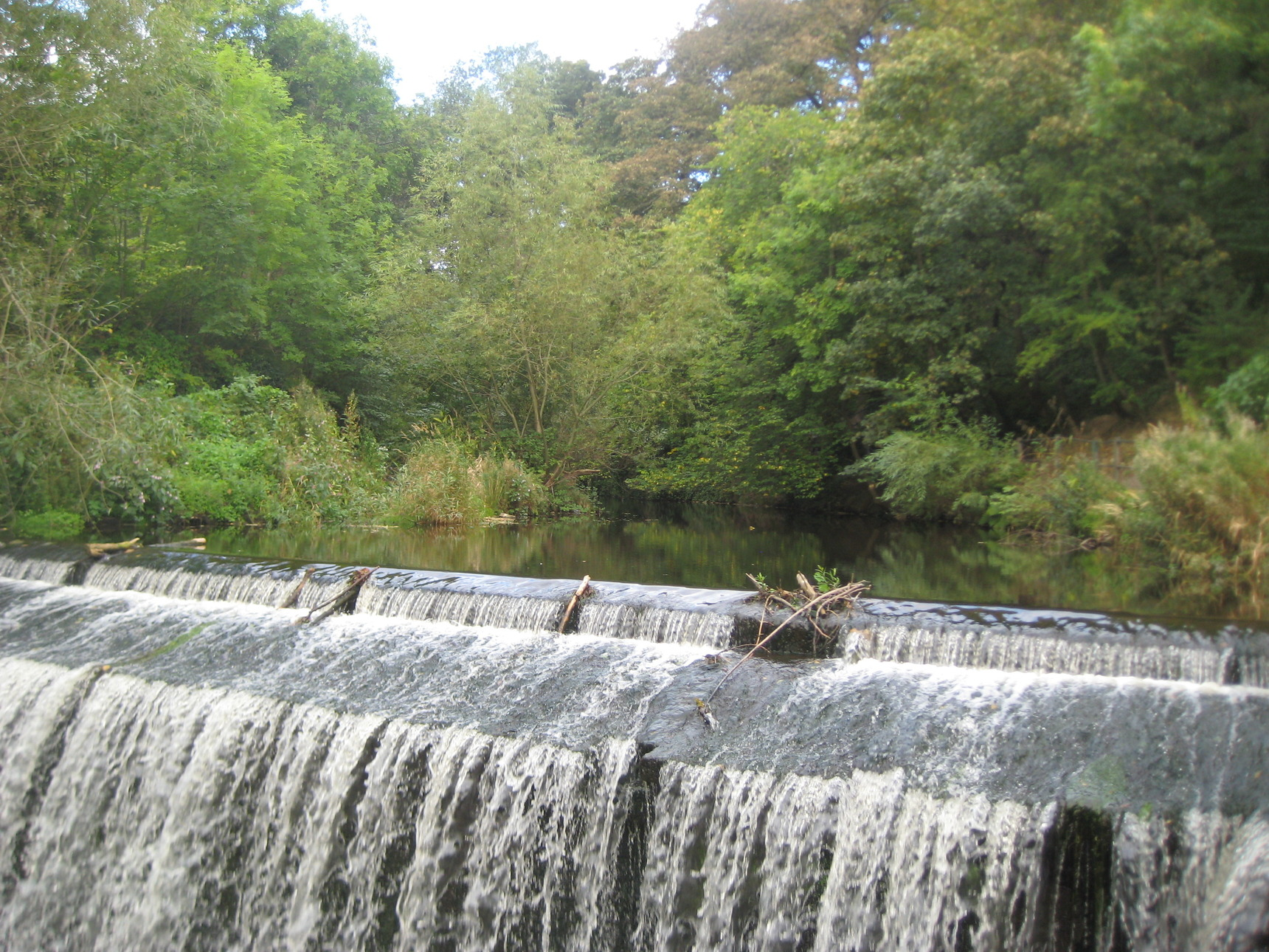 The Dean Village Tannery Falls and the Hedgie