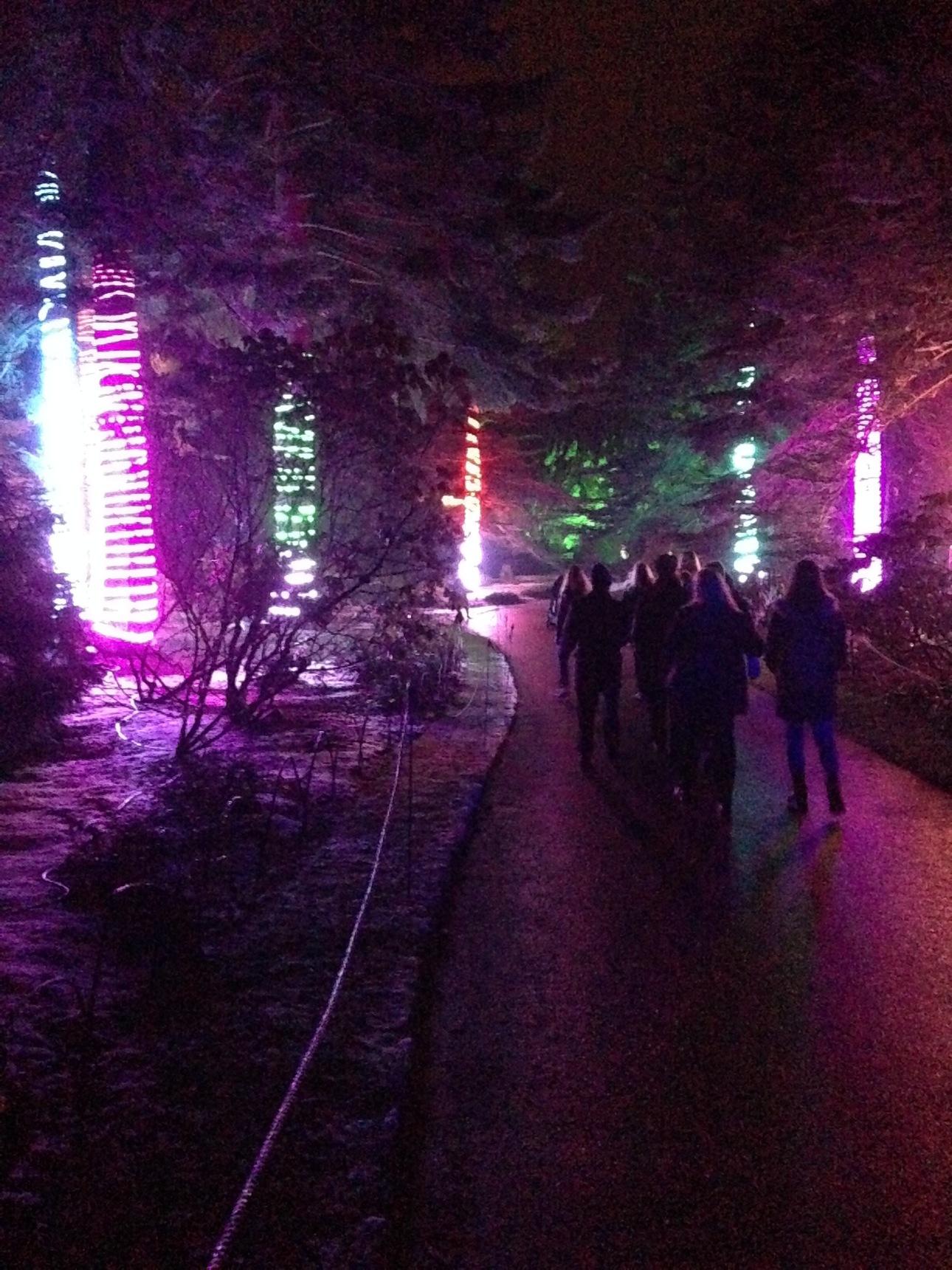 Botanic Gardens at Christmas