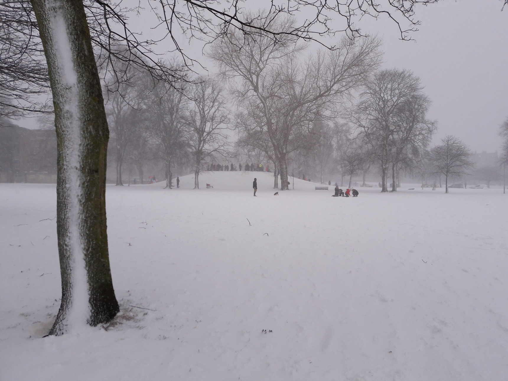 Playing in the snow at Leith Links
