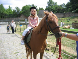 Pony ride at Gorgie City Farm