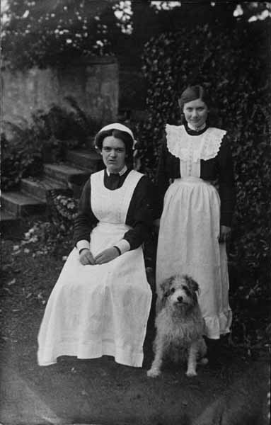 Cook And Maidservant With Dog 1915