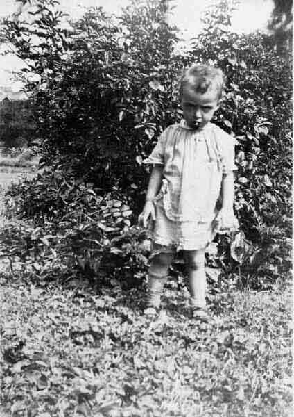 Young Boy Standing In Garden 1880s