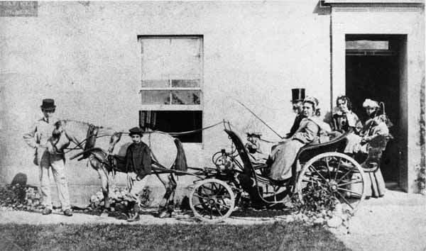 Victorian Family With Pony And Carriage c.1870