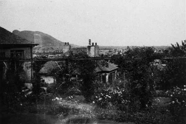 Garden View From Observatory Road To Arthur's Seat 1930s
