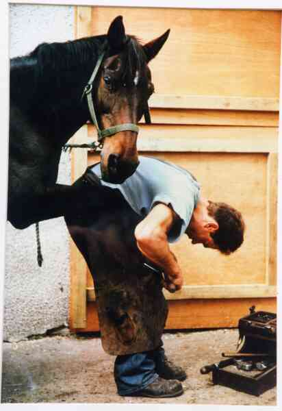 Farrier At Work At Westmuir Farm 1992