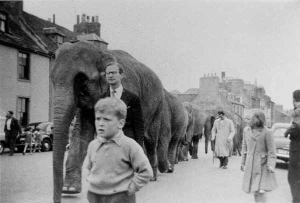 Circus Carnival Street Parade In Arbroath c.1957