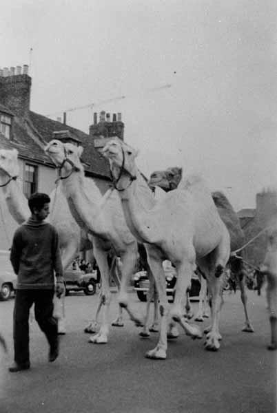 Circus Carnival Street Parade In Arbroath 1957