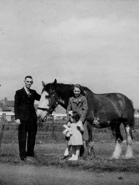 Family With Work Horse 1949
