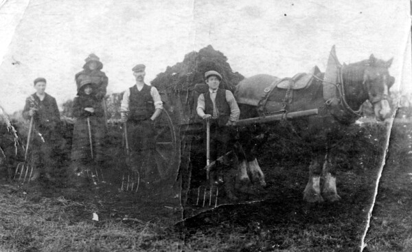 Farm Workers And Horse-Drawn Cart At Dalmeny Farm 1920