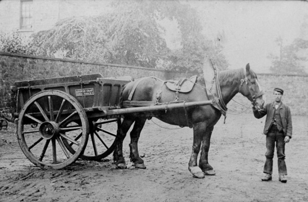 Farm Worker With Horse And Cart At Gorgie Mains Farm 1903