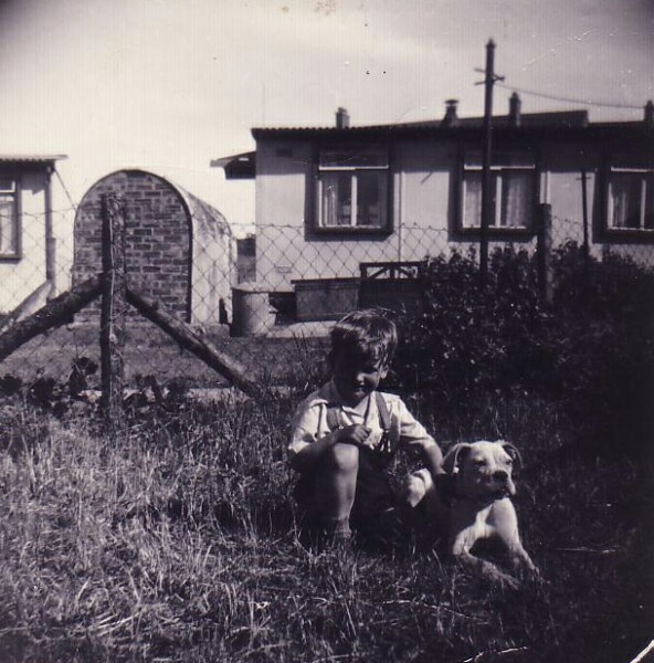 Young Boy With Dog In Back Green At Oxgangs Grove 1956
