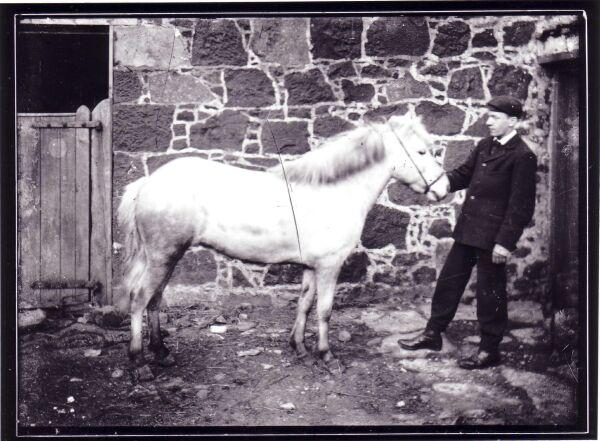 Man And Pony c.1905