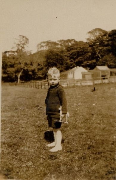 Young Laddie With Toy Wooden Horse 1923
