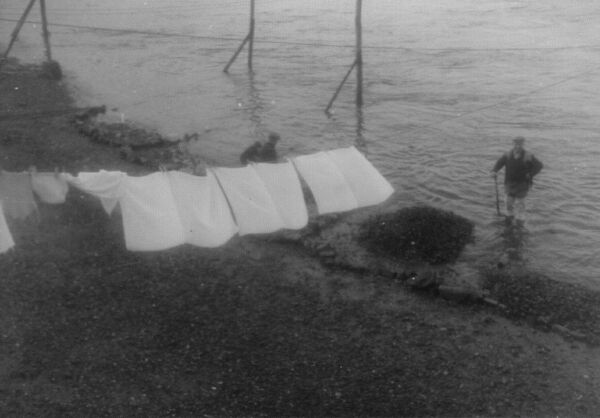 Washing On Line Drying By The Seashore 1962