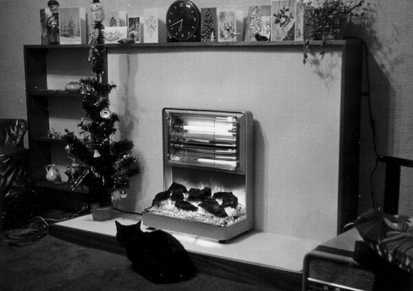 Pet Cat Sitting In Front Of Electric Fire At Home In Waverley Place, early 1960s