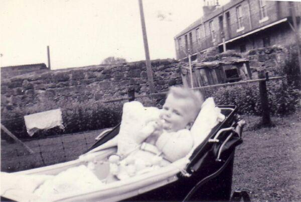 Baby In Pram In The Back Garden Of His Home In Ormiston 1953
