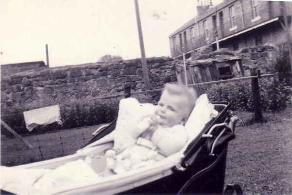 Baby In Pram In The Back Green 1953