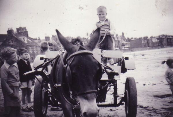 Donkey And Cart Ride Along The Beach 1959