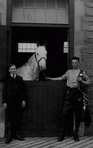 Young Man With Horse And Harness Gear At Stable 1920s