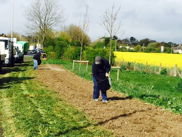 Sowing the floral meadow alongside the A71