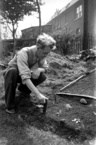 Man Working On Vegetable Plot In His Back Garden At 39 Northfield Crescent c.1957