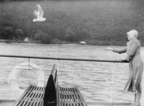 Feeding The Gulls On Board The Steamship 'Waverley' 1932
