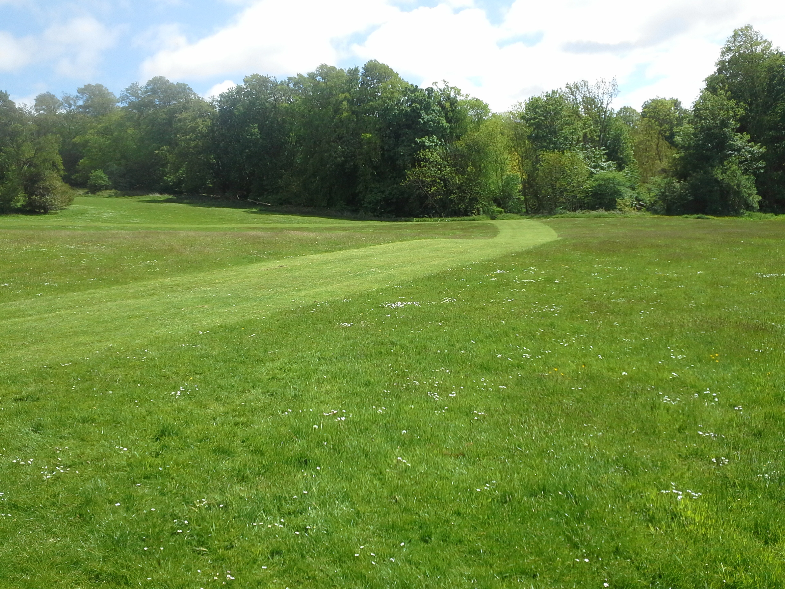 Edinburgh Living Landscape at Corstorphine Hill June 2015