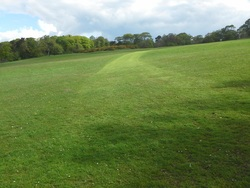 Edinburgh Living Landscape at Corstorphine Hill May 2015