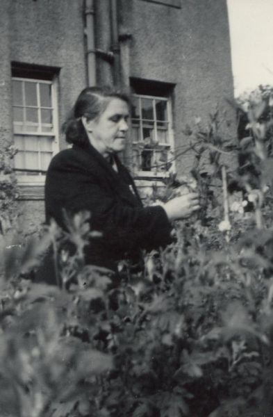 Woman Tending To Plants In The Garden At 26 Prestonfield Avenue 1940s