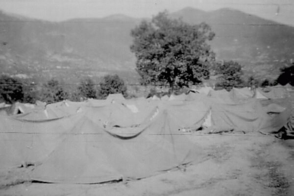Army Tents Pitched Amidst Vineyards In Tuscany 1944