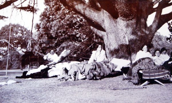 Edwardians Enjoying The Garden Sunshine c.1911