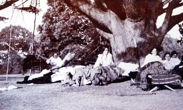 Edwardians Sitting In Garden Enjoying The Sunshine c.1911
